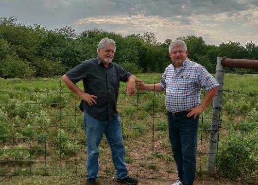 Texas Hemp Farm